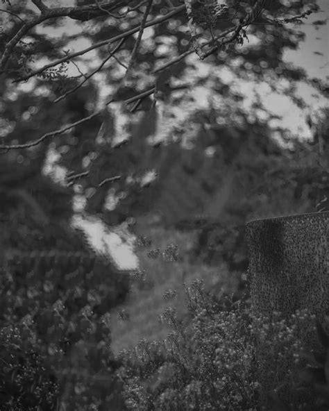 PicsArt cinemetic / Dramatic light effect Photo editing