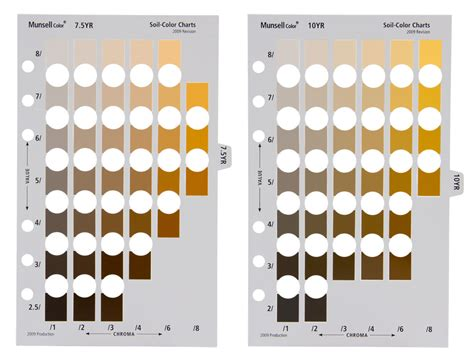munsell color chart munsell soil color charts
