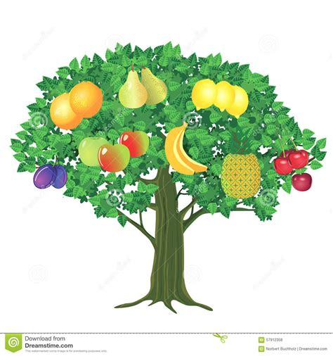 fruit tree clipart fruit growing clipart clipground