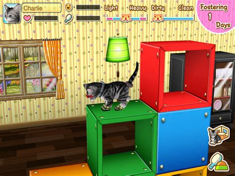 my cat my room my cat my room android apps on play