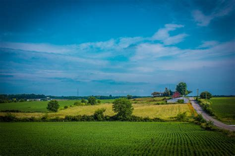 tree farm cory indiana 12 charming farms in indiana will make you the country