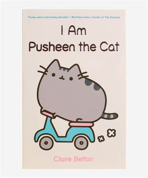 i am a cat books i am pusheen the cat hey chickadee