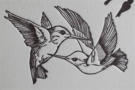 hummingbird outline tattoo 38 hummingbird designs and ideas