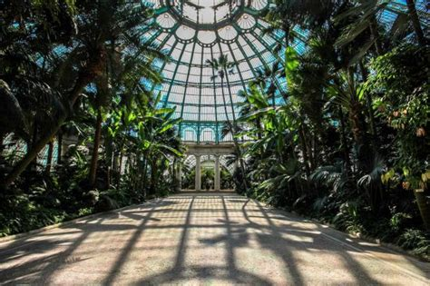Interior Decorations Home the royal greenhouses of laeken and the father of art nouveau