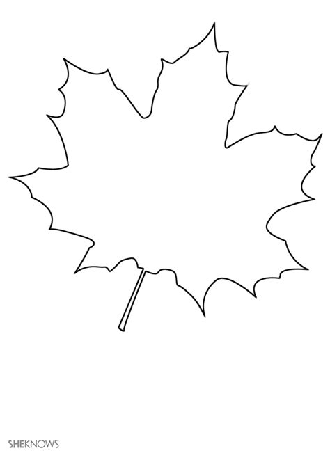 maple leaf printable template autumn coloring pages maple leaves