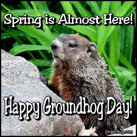 groundhog day slang meaning almost happy groundhog day glitter graphic