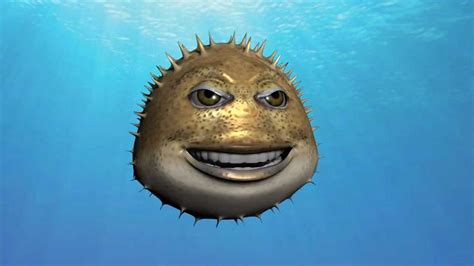 puffer fish talking puffer fish