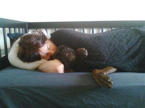 sleeping in my bed remix file human sleeping on a bed with a dog jpg wikimedia