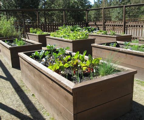raised flower bed kits elevated garden beds in gorgeous grow shelter as wells as