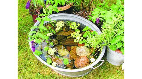 Wasserstellen Im Garten 2107 by Insekten M 252 Ckeninvasionen Lassen Sich Vermeiden