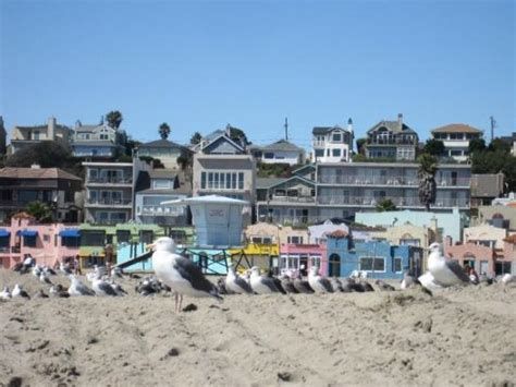 capitola village shopping dining activities find capitola city beach all you need to know before you go