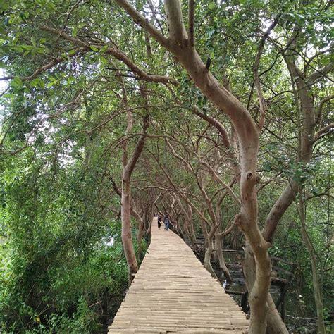 informasi wisata alam hutan mangrove pik jakarta
