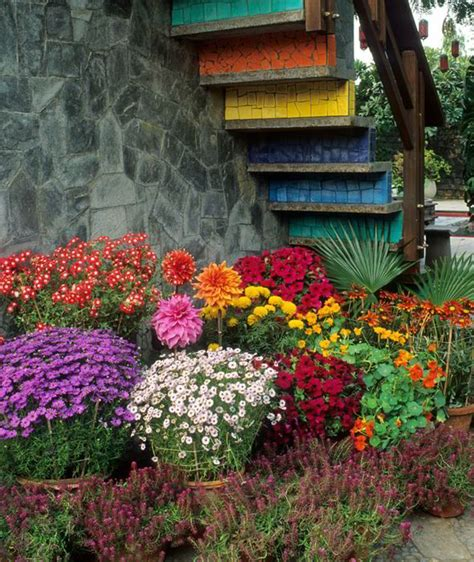 Floral Arrangement Ideas by Alan Titchmarsh On Colourful Garden Plant Containers