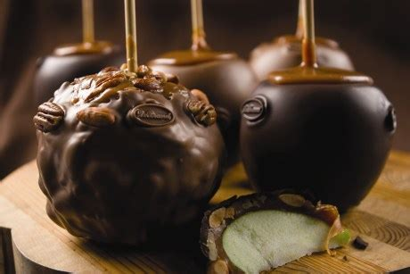 Harga Dove Chocolate Milk Chocolate chocolate caramel lollichoco