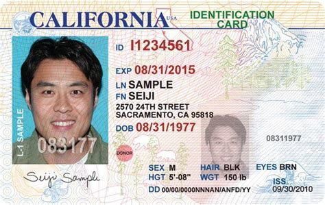 Ny State Id Card Template by Ca State Id Images Frompo