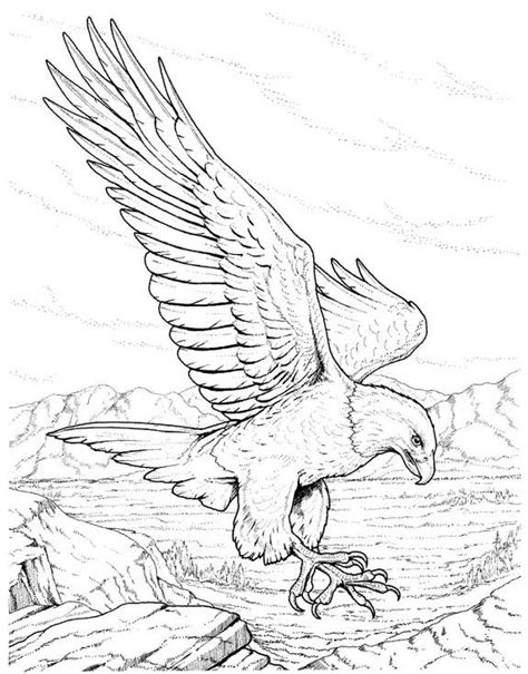 coloring page eagle flying eagles lions of the sky coloring pages