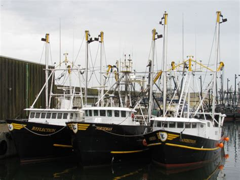 scallop boat new bedford scallop boats commercial fishing