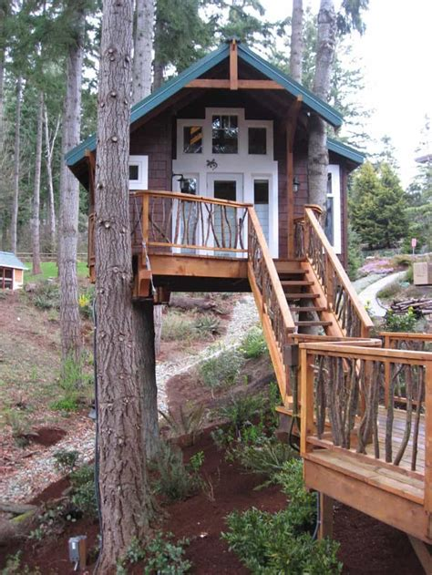 house trees how to build a treehouse in the backyard