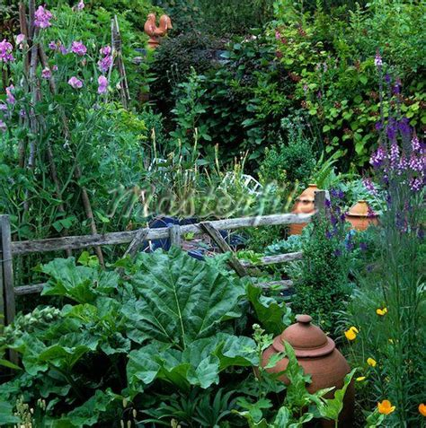 157 Best Allotment Images On Pinterest Potager Garden Allotment Vegetable Gardening