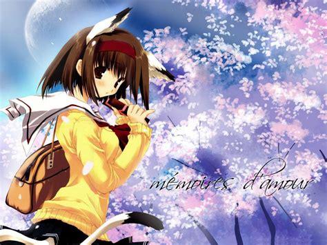 imagenes de amor en wallpaper wallpapers tiernos de anime taringa
