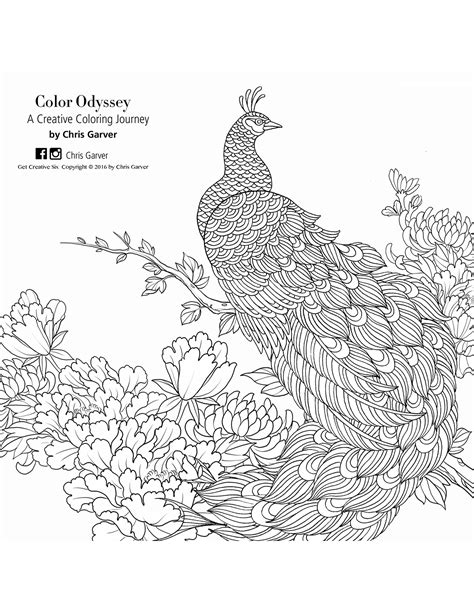 color odyssey a creative coloring journey coloring book