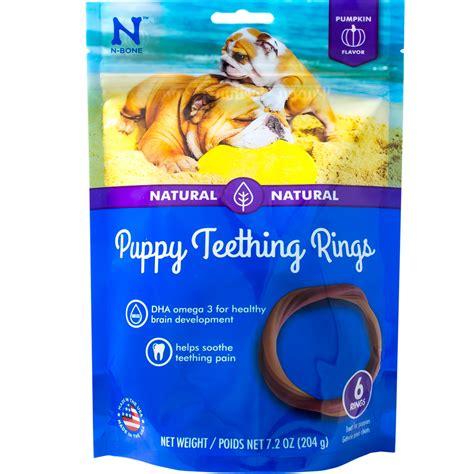 puppy teething ring n bone puppy teething ring pumpkin flavor 6 pack 7 2 oz
