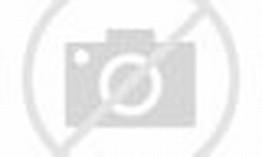 Modifikasi Toyota Avanza Veloz Tampilan Bergaya FBI