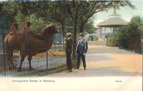 zoologischer garten hamburg preise les zoos dans le monde zoologischer garten in hamburg