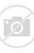 gambar kartun muslimah cantik imut