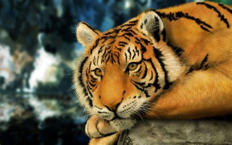 wallpaper mac tiger mac tiger wallpapers wallpaper cave