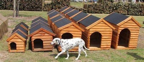 dog houses south africa dog kennels kennels dog houses honde hokke full range of kennels in stock always