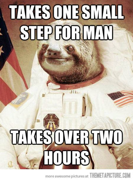 Astronaut Sloth Meme - astronaut sloth the meta picture