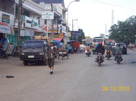 Teh Pucuk Di Warung comal pemalang jawa tengah pucuk cemara