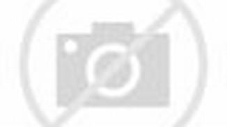 SD Plus Hang Tuah 1 Jakarta: Nama-nama Pelabuhan Di Indonesia