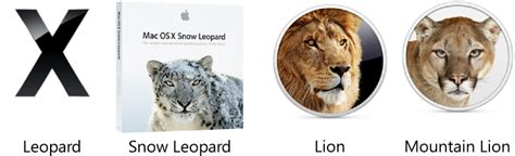 how to upgrade from snow leopard to lion how to upgrade mac os x from leopard 10 5 snow leopard