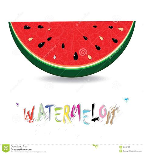 juice pattern vector watermelon fresh slices background red sweet juice