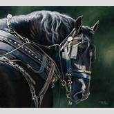 Draft Horse in Harness Print of original pastel painting Black ...