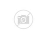 Coloriage Herbizarre - Pokémon type Plante Poison