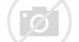 Pineapple Smoothie