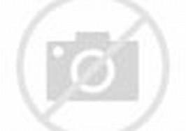 Gambar Lukisan Pemandangan Alam
