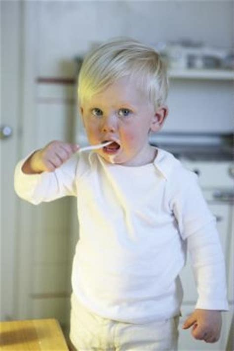healthy fats for underweight toddlers 212 best images about underweight child on