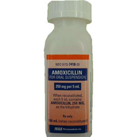 can dogs amoxicillin amoxicillin liquid dosage for dogs wenn cytotec nicht wirkt