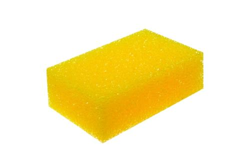 sponge for upholstery autocaredirect upholstery sponge