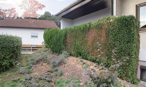Bader Garten
