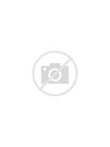 Window Cling Stained Glass Pictures