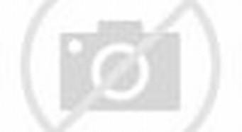 Heboh! Tiga Cewek Telanjang Berubah Menjadi Seekor Harimau