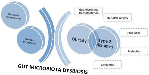 Pathophysiology Of Type 2 Diabetes Essay by Type 2 Diabetes Essay Conclusion Docoments Ojazlink