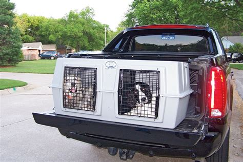 truck bed dog crate truck bed dog crate brilliant dog cage for bed of truck