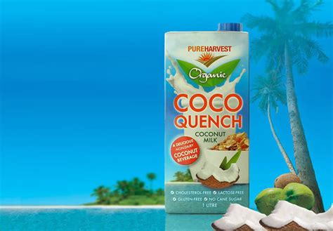 coco quench product trial pure harvest coco quench the coffee