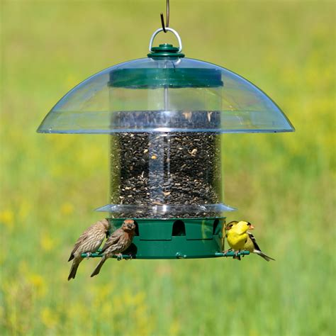 k feeders super carousel wild bird feeder
